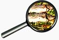 Italienisch in der Küchen online Sprachkurs
